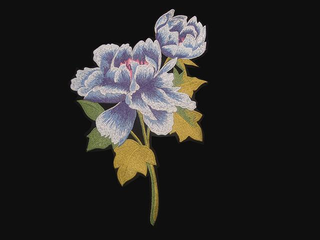 POPPY EMBROIDED FLOWER MOTIF BLUE MULTI