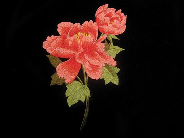 POPPY EMBROIDED FLOWER MOTIF RED MULTI