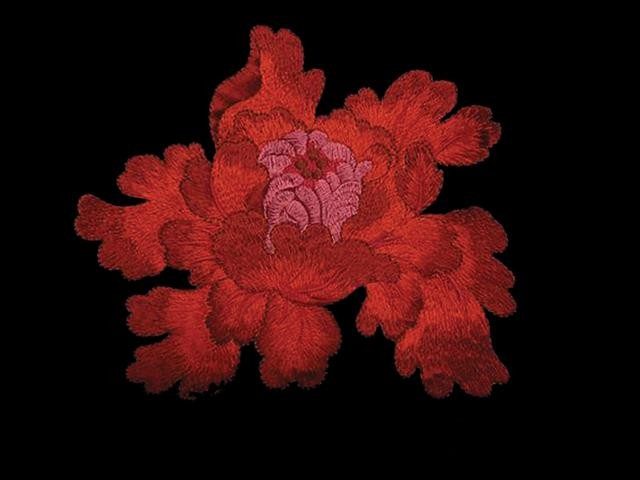 PASSION EMBROIDERED MOTIF RED