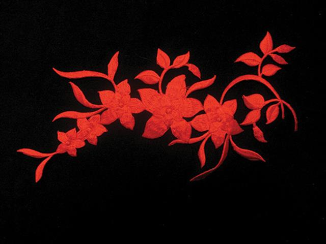 GLAMOUR EMBROIDERED MOTIF