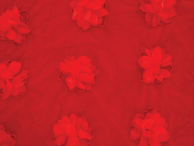 3D FLOWER VINE EMBROIDERY ON STR NET RED