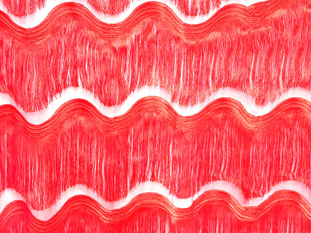 SCALLOPED ALL OVER FRINGE ON NET RED