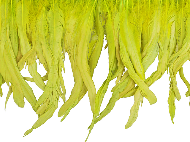 LARGE COQUE FRINGE - APPROX 25CM T-LIME
