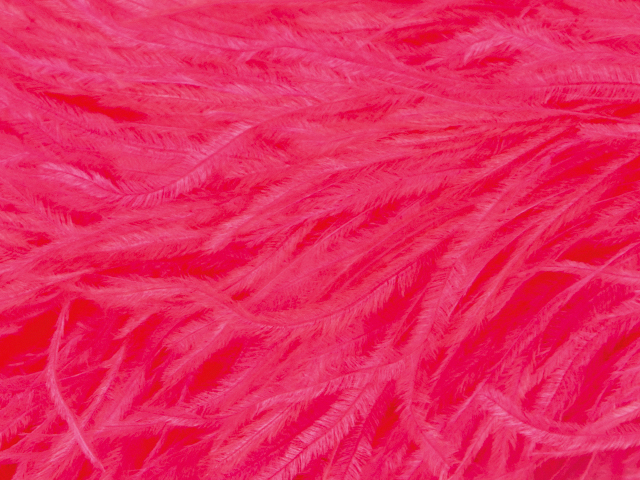 OSTRICH FEATHER FRINGE PINK TROPICANA